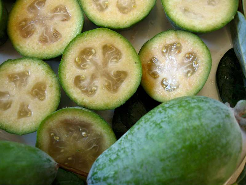 Fourth uncommon exotic fruit - The feijoa