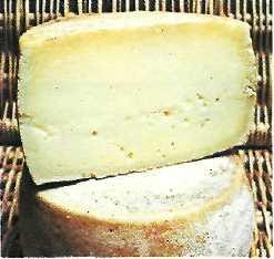 Pra dei Gai pecorino cheese
