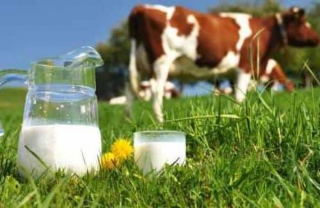 how to preserve milk