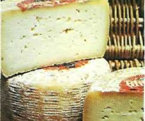 This image it is about Pecorino sardo cheese