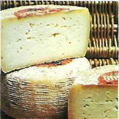 pecorino sardo cheese