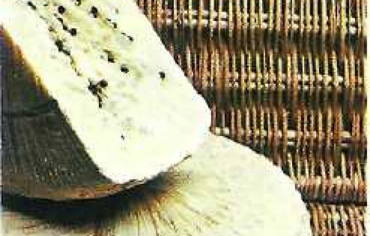 pecorino siciliano cheese