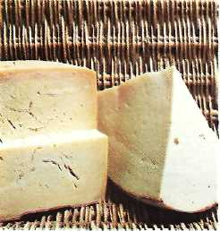 provolone and caciocavallo cheese