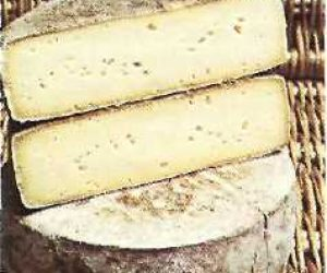 This image it is about Tomme Cheese