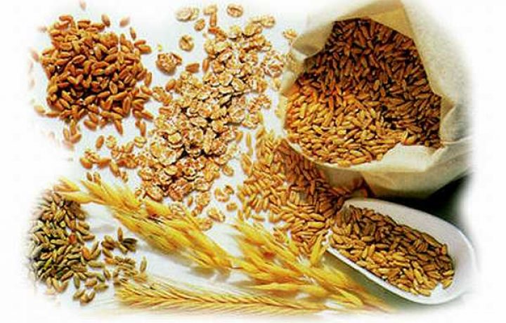 What's the Big Deal about Whole Grains? 2