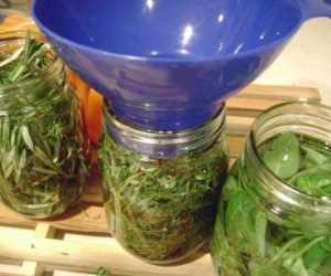 This image it is about Herbal Vinegars : So Good, So Easy