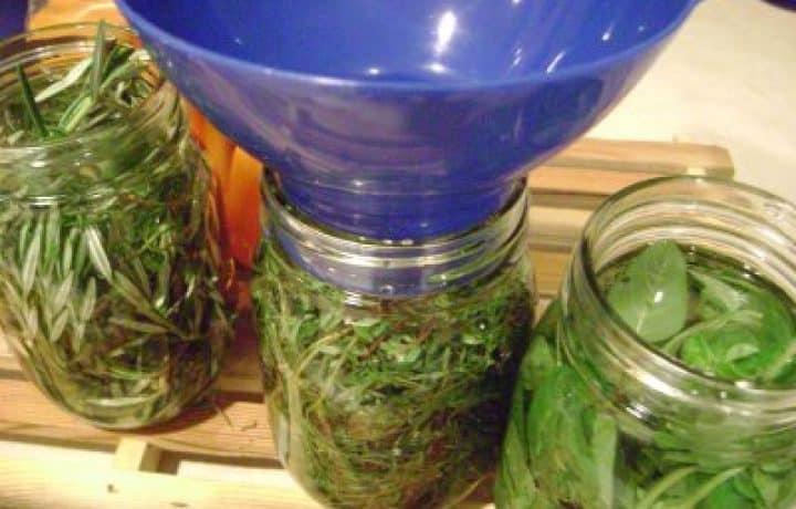 Herbal Vinegars : So Good, So Easy 2