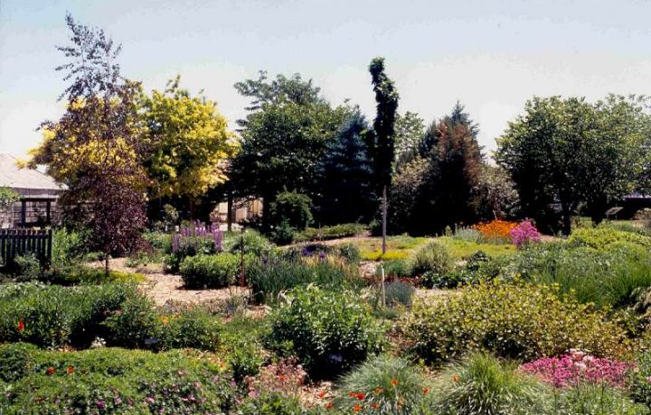 Planning The Perennial Garden 2