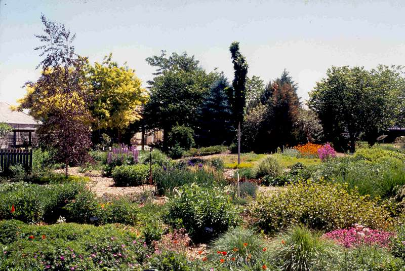 Planning The Perennial Garden