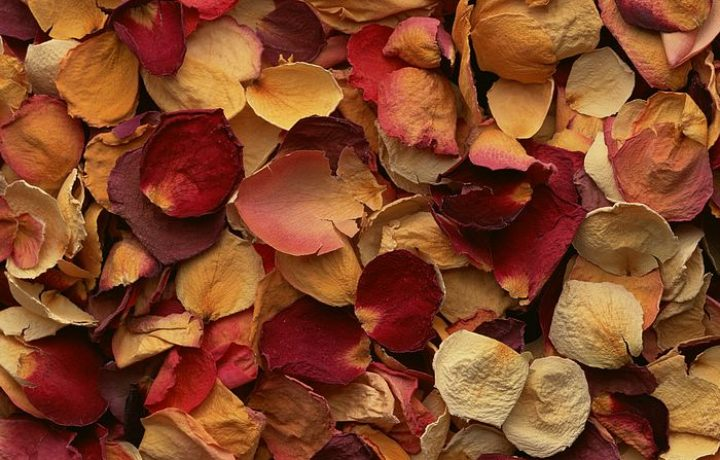 Potpourri: Makes Scents To Me 2