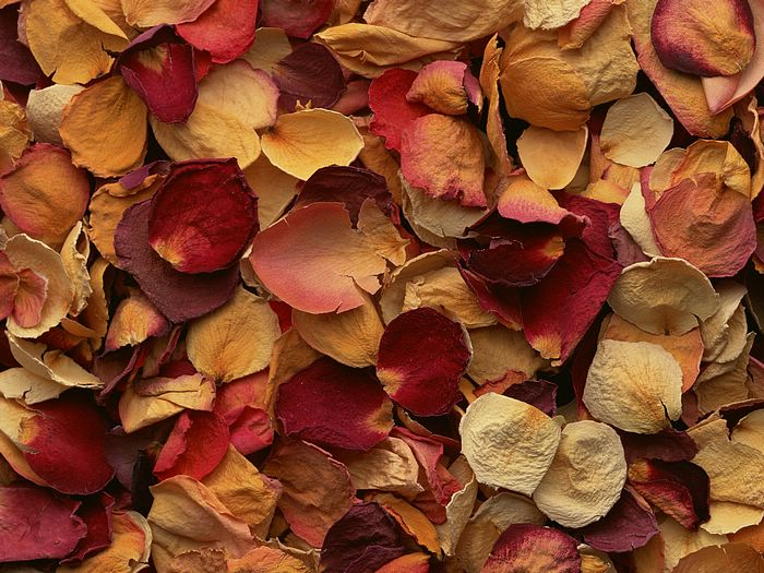 Potpourri: Makes Scents To Me