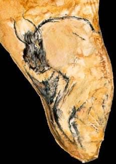The Chauvet Cave - The scientific research - Part 1 8