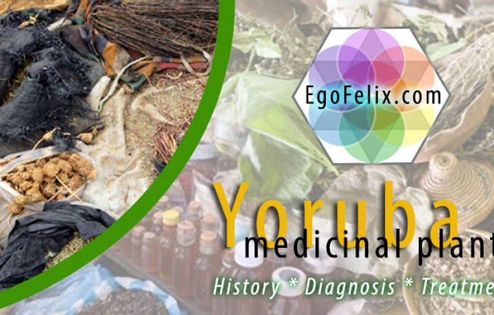 yoruba medicine - yoruba name for medicinal plants
