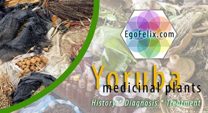 yoruba medicine - yoruba name for medicinal plants