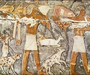 Bearers of Offerings-Necropolis of Memphis at Saqqara