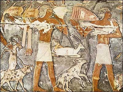 Bearers of Offerings-Necropolis of Memphis at Saqqara