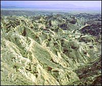 Pleistocene Park 3