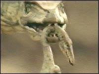 A dinosaur slice-of-life 5