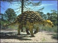 The Mesozoic Era - the 'Age of Dinosaurs' 6