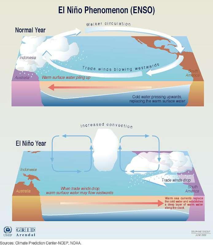 Predicting El Nino