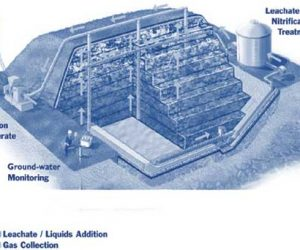 This image it is about Bioreactors – bacteria are encouraged to flourish