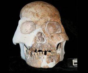 This image it is about Early living humans in Europe – Neandertals and Cro Magnons