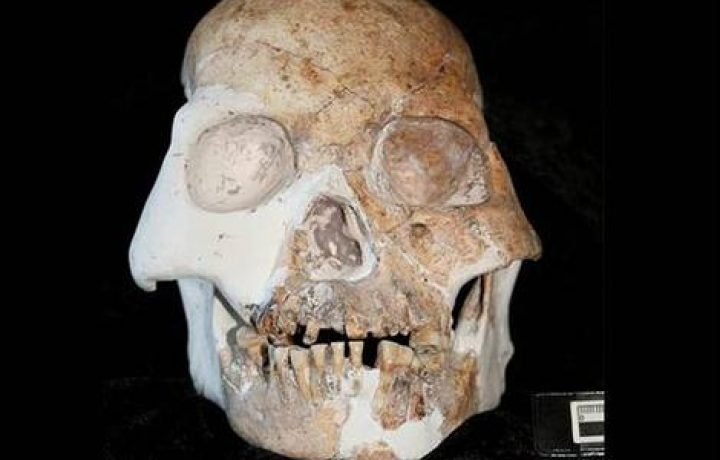 Early living humans in Europe - Neandertals and Cro Magnons 1