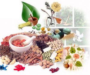 This image it is about Ayurvedic medicine is the oldest treatment in the world