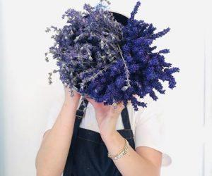 Imaginea thumbnail despre Melissa's Trifle with lavander flowers