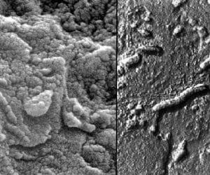 Imaginea thumbnail despre Meteorite ALH84001 found in Antarctica care wonderful news!