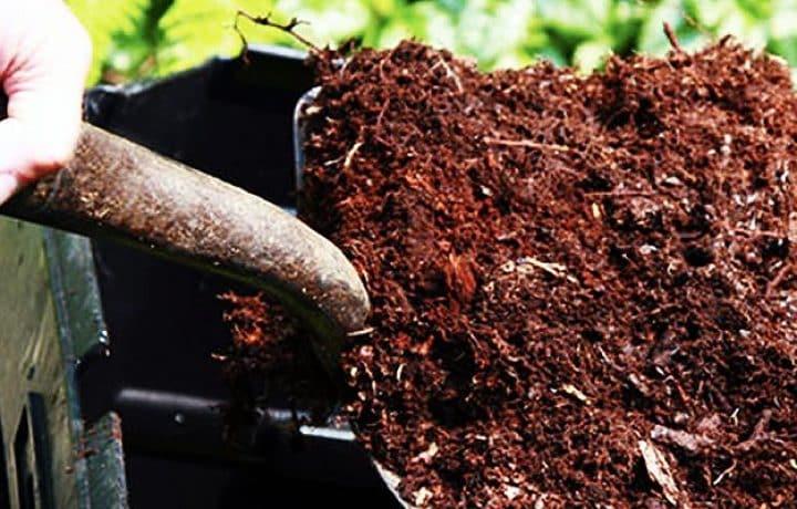 Compost your poop