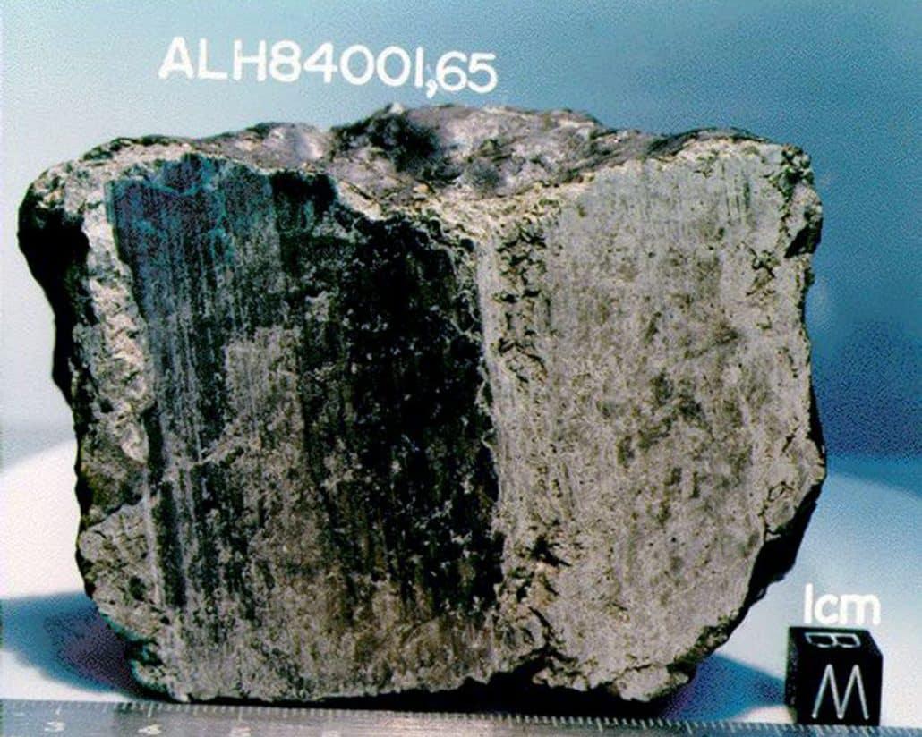 Martian meteorite Alh84001