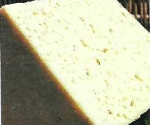 This image it is about Pannerone cheese