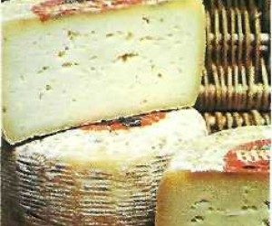 This image it is about Pecorino sardo cheese
