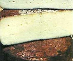 This image it is about Pecorino Toscano Cheese